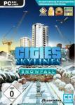 Cities: Skylines - Snowfall - Downloadversion *
